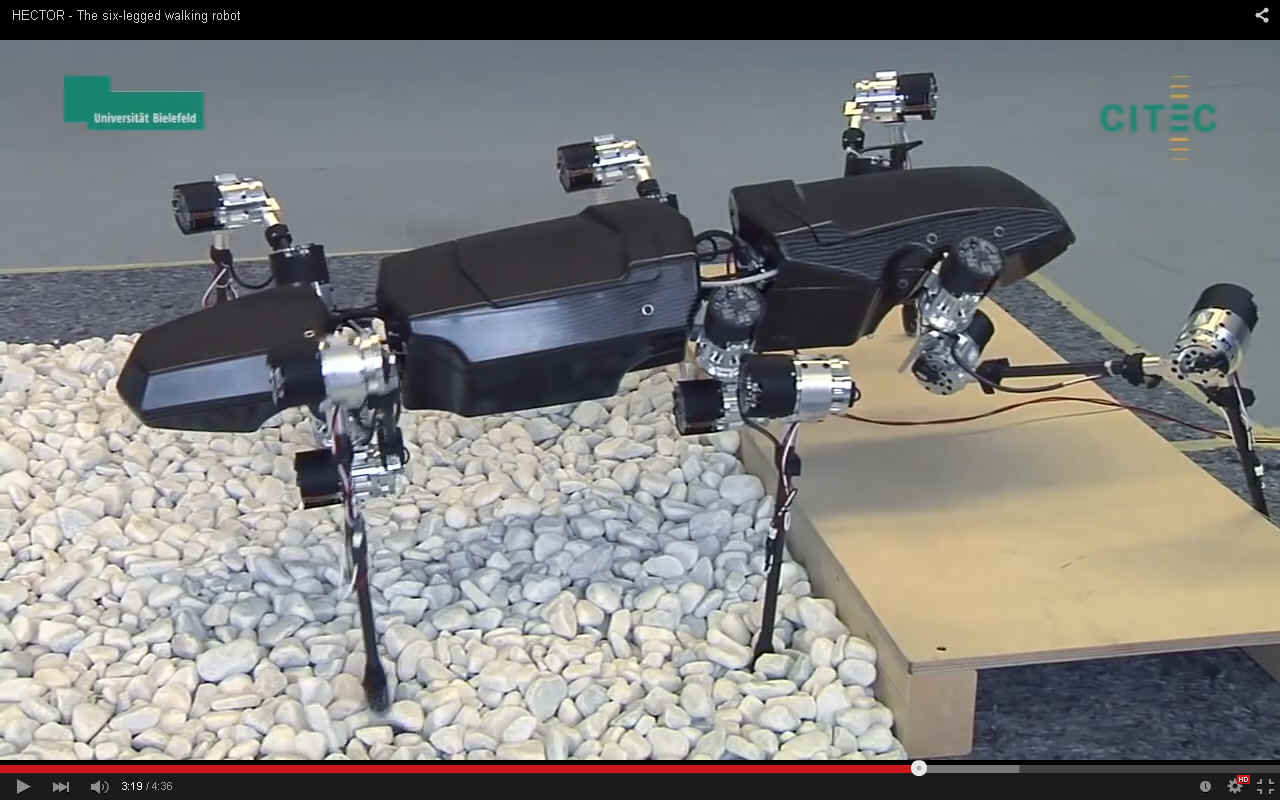 research papers hexapod manipulator
