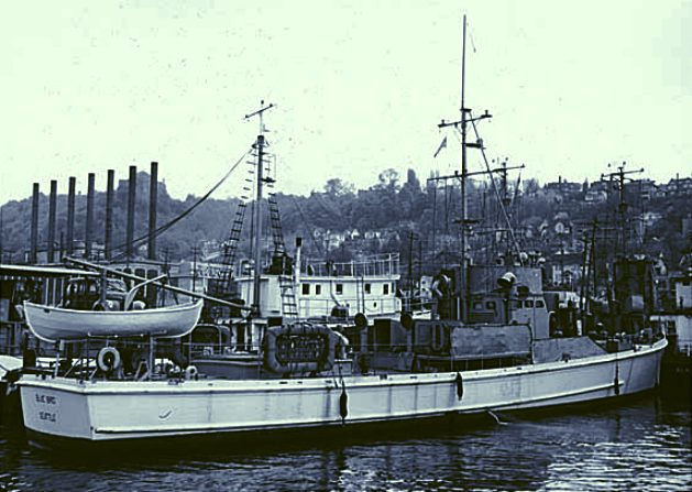 Bluebird minesweeper US Navy countermeasures WWII