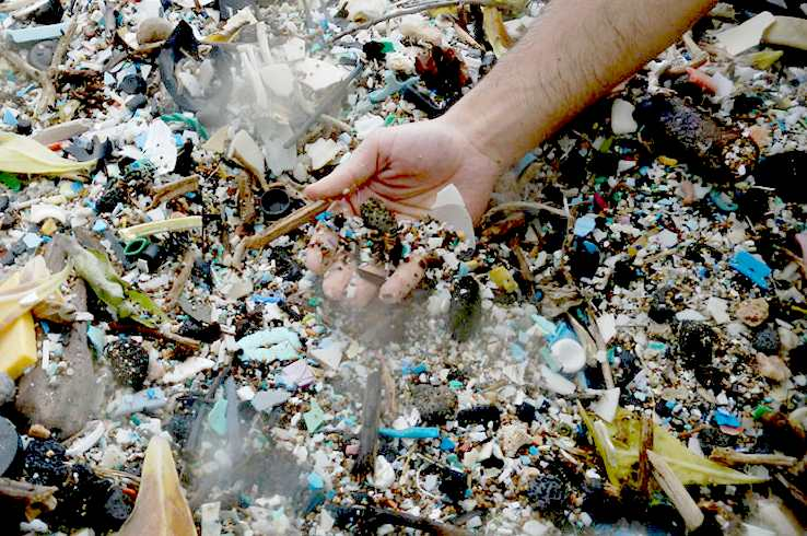 plastics in ocean essay Environment, water pollution - the pacific ocean is a plastic garbage dump.